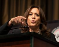 Kamala Harris Starts To Question Medicare For All, Bernie Snaps